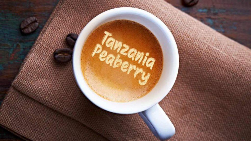 قهوه پی بری تانزانیا، از بهترین قهوه های جهان