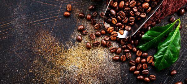 انواع دانه های قهوه