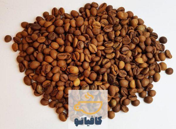 دانه قهوه چری روبوستا هند