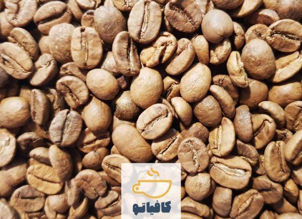 قهوه عربیکا برزیل لایت رست