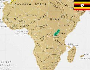 خرید دانه قهوه عربیکا اوگاندا رست مدیوم دارک لایت
