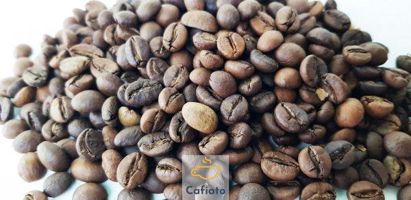 daily mix coffee beans
